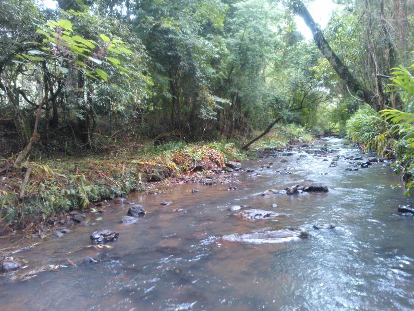 Área de terras em Morro Reuter