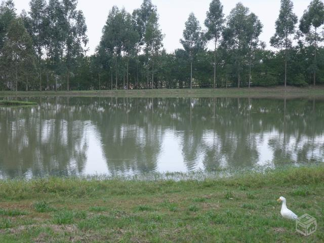 Eco Residence Ninho Verde 1 Lote Frente ao Lago