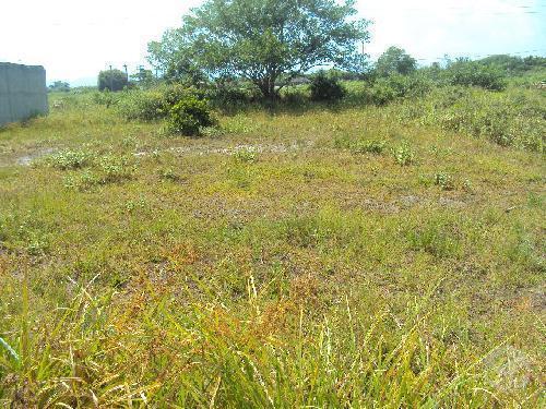 Terreno aterrado e desmatado em Itanhaém/SP