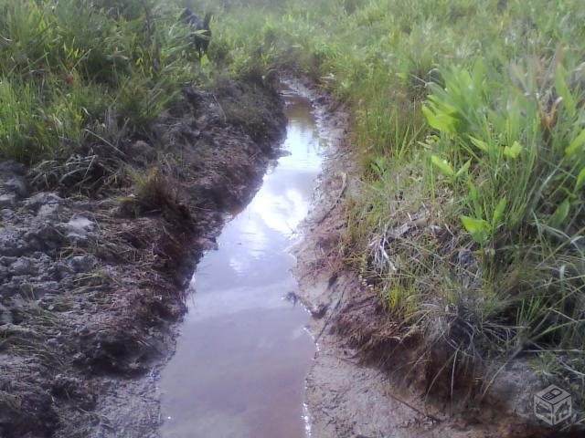 Terreno em Itaguara 12 mil m² água corrente plano