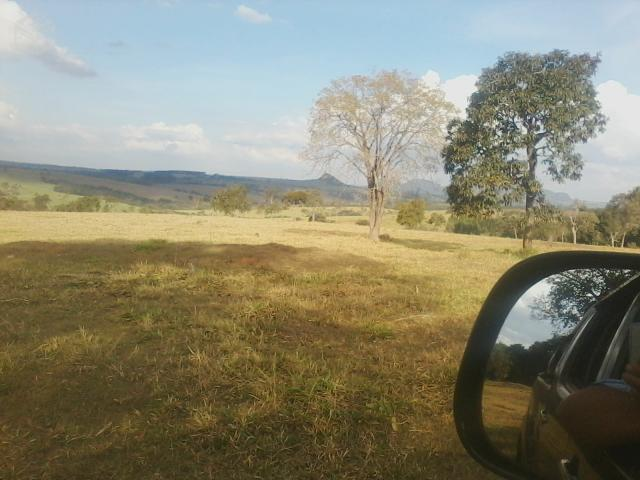 Sítio em Altinópolis - Plano - 10 alqueires