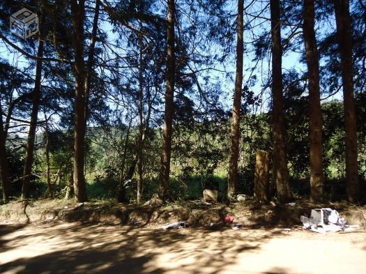 Área de 117000m² na Vila Moraes-Mogi das Cruzes