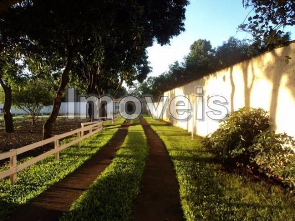 Condominio Pingo de Ouro Chacara:10.000 mts quadrado