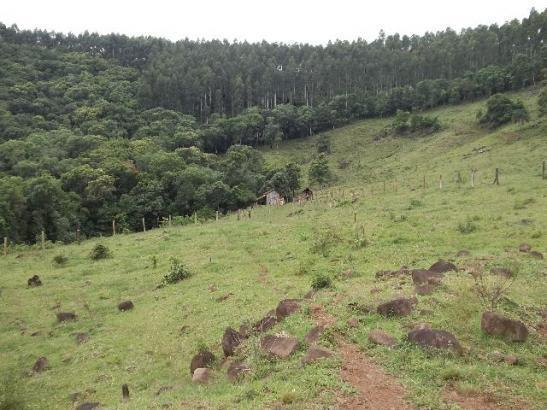 Linda Área Terra com 217.800m² a 3,5 km da Com. de L. São Paulo