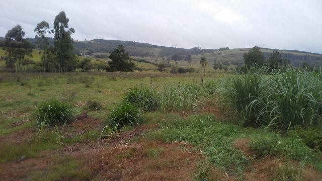 Sítio de 7,6 hectares em , RS, com 3 açudes e terreno plano