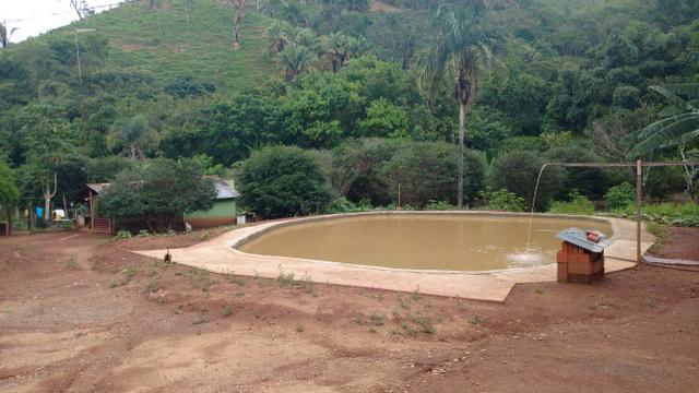 Fazenda riquíssima em água 29 alqueires